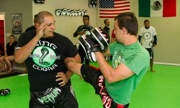 King Cobra MMA - Downey: Four Weeks of Unlimited Martial Arts Classes at King Cobra MMA (54% Off)