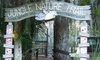 Jungle Adventures - East Orlando: Full-Day Visit for Two or Four to Jungle Adventures (Up to 48% Off)