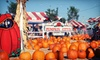 Pumpkin City's Pumpkin Farm - Laguna Hills: $29 for Day of Fun with Rides, Petting Zoo, and Pumpkin Credit at Pumpkin City's Pumpkin Farm (Up to $60.20 Value)