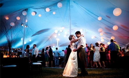 $100 Worth of Event Rentals - Party Perfect in