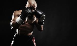 paX-Training Germany: 3 oder 5 Einheiten Fitness-Boxtraining mit paX-Training Germany (bis zu 73% sparen*)