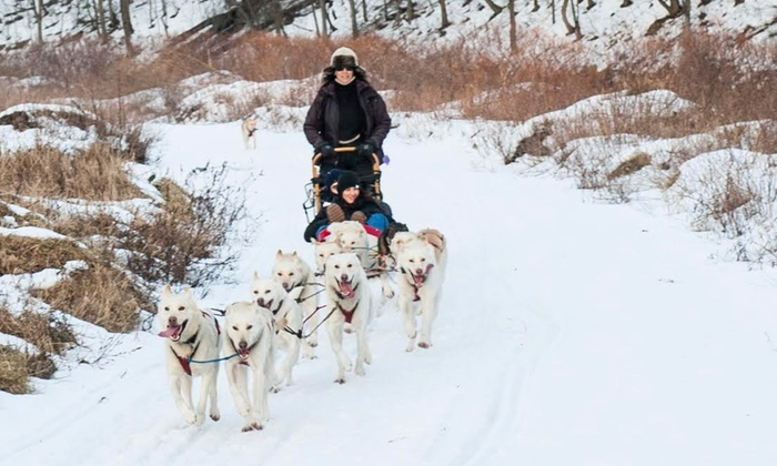Hilltown Wilderness Adventures - DAR State Forest: $179 for a Dogsledding Adventure with a Husky Racing Team from Hilltown Wilderness Adventures ($400 Value)