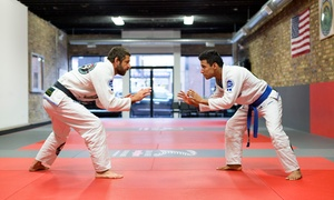 Andre Maneco Brazilian Jiu Jitsu: Up to 79% Off Martial Arts Classes at Andre Maneco Brazilian Jiu Jitsu