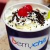 40% Off Frozen Yogurt at berrychill