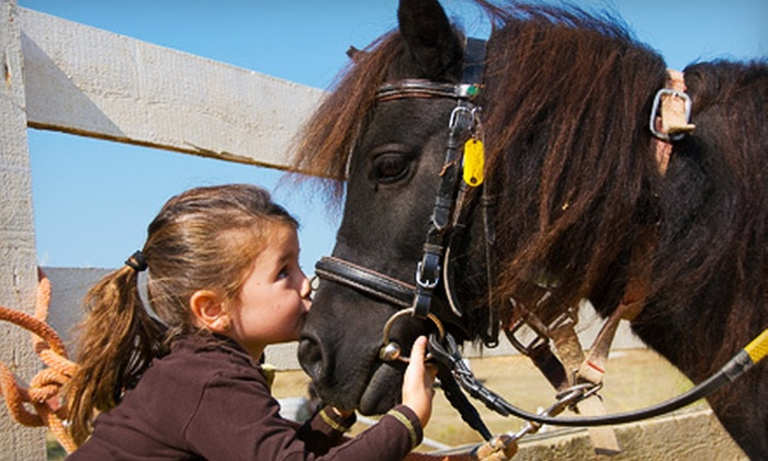 Lemos Farm - San Mateo Highlands: Farm Day Passes for Two Children and Two Adults, or $50 for $100 Toward a Children's Party at Lemos Farm