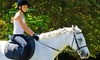 Up to 57% Off Horseback-Riding Lesson