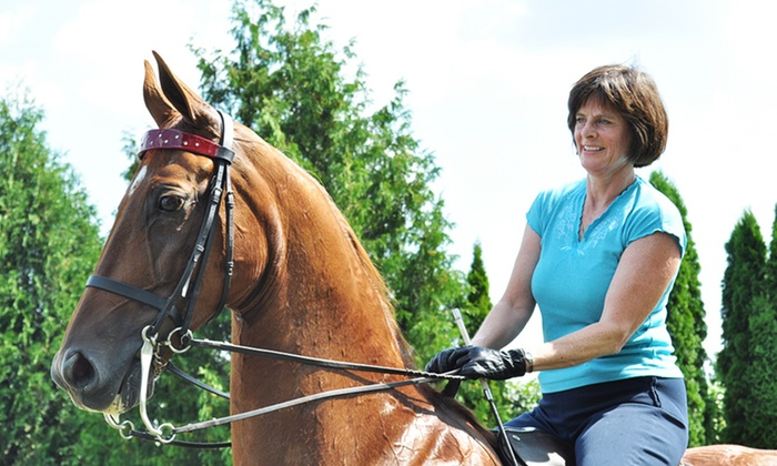 La Fleur Stables - West Madison: One or Two One-Hour Horseback-Riding Lessons at La Fleur Stables (Up to 50% Off)