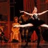 """Swan Lake"" – Up to 50% Off Ballet"