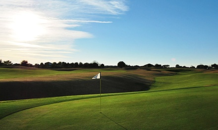 $34 for an All-Day Golf Package, Cart Rental, and a Drink at Black Bear Golf Club ($67 Value)