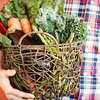 57% Off Delivered Organic Produce