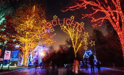 image for $29 for ZooLights Family Package at Smithsonian's National Zoo ($60 Value)