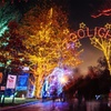 52% Off ZooLights Package at Smithsonian's National Zoo