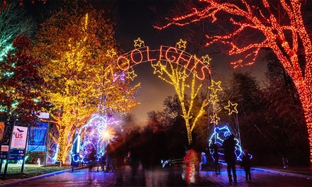 $29 for ZooLights Family Package at Smithsonian