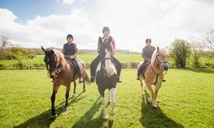 C.I.R. Centro Ippico Romanello: 3 o 5 lezioni di equitazione per adulti e bambini da C.I.R. Centro Ippico Romanello (sconto fino a 74%)