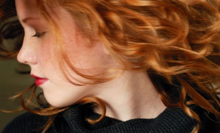 Haircut and Style Package at The Last Tangle Salon and Spa in Orangevale (Up to 54% Off). Three Options Available.