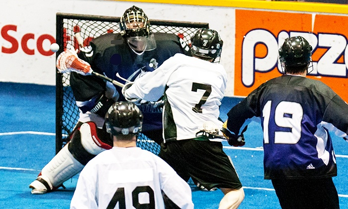 Arena Lacrosse League Showcase Tour - Santander Performing Arts Center: One Ticket to the Arena Lacrosse League Showcase Tour at Santander Arena on Saturday, July 11, at 7 p.m. (Half Off)