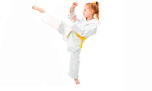 Martial Arts Warriors Academy: Martial-Arts or Boot-Camp Classes at Martial Arts Warriors Academy (Up to 81% Off). Four Options Available.