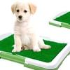 PAW Puppy Potty Trainer