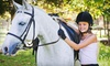 Lynette's Riding School: $75 for One Month of Horseback-Riding Lessons at Lynette's Riding School ($150 Value)