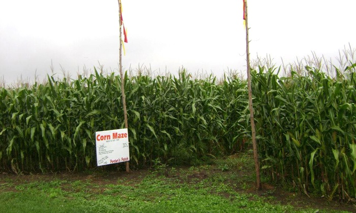 Porter's Patch - Lessor: Corn Maze for 6, 8, or 10 at Porter's Patch (Up to 53% Off)