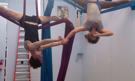 Two Aerial Circus-Arts Classes or One-Hour Private Lesson for Up to Two (Up to 53% Off)