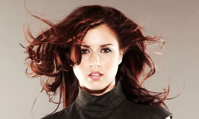 Fantasia Spa & Cut - Wixom: Haircut with Conditioning and Optional Full Color or Partial or Full Highlights at Fantasia Spa & Cut (Up to 65% Off)