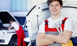 ELOCAR: Checkup complet et révision de tous types de véhicules dès 19,99 € au garage Elocar
