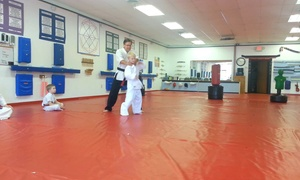 Aa Kenpo Karate: Four Weeks of Unlimited Martial Arts Classes at AA Kenpo (70% Off)