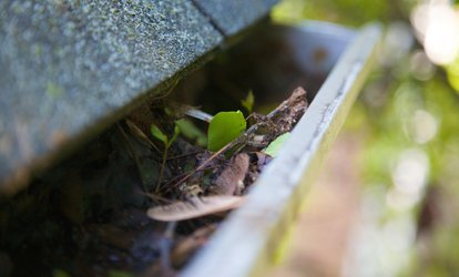 $275 for $500 Worth of Gutter Cleaning — luigi handyman <strong>services</strong>