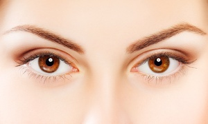 Beauty Brow and Lash Bar Pty Ltd: Brow and Lash Tint with Threading - 1 ($19), 2 ($35) or 3 Sessions ($49) at Beauty Brow and Lash Bar (Up to $144 Value)