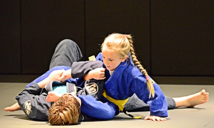 American Top Team - Charleston: $99 for $331 Worth of Martial-Arts Lessons — American Top Team