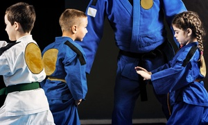 Soul Fighters DFW: 10 or 20 Kids' Jiu-Jitsu Classes at Soul Fighters DFW (Up to 66% Off)