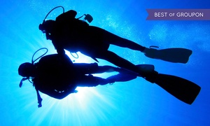 Deep Blue Scuba: Refresher Course or Open-Water Scuba-Certification Class for One or Two at Deep Blue Scuba (Up to 54% Off)
