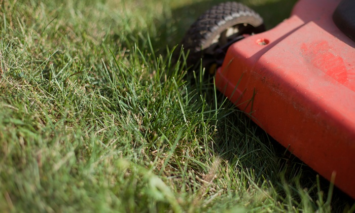 CE Landscaping and Lawn Service - Orlando: Up to Two Hours of Mowing Services with Option for Hedge Trimming from CE Landscaping and Lawn Service (Up to 53% Off)
