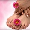 Up to 55% Off Nail Services in Santa Rosa