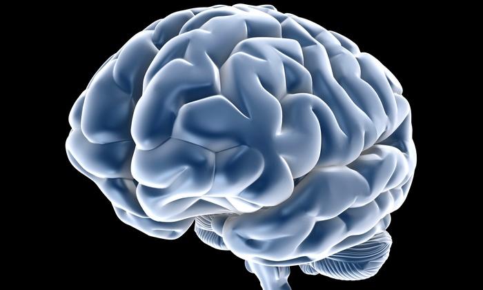 Santa Barbara Brain Fitness - Goleta: One or Three Brain-Fitness Training Sessions at Santa Barbara Brain Fitness (Up to 71% Off)