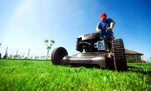 AMBE Landscaping, LLC: $61 for 30 Minutes of Lawn Maintenance AMBE Landscaping, LLC
