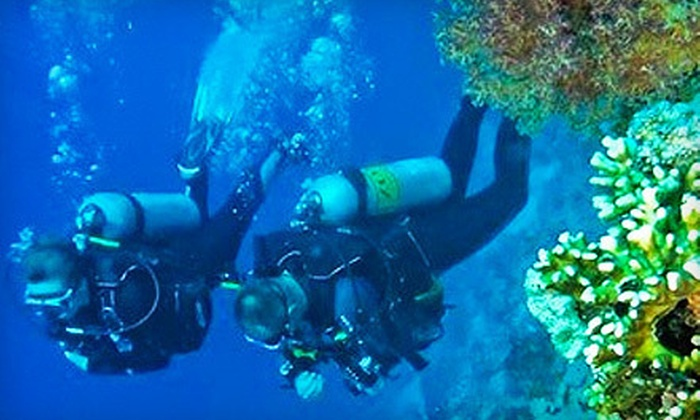 Planet Scuba - The Foot Hills: Six-Session Scuba Certification Course with Optional Certification Diving Trip from Planet Scuba (51% Off)