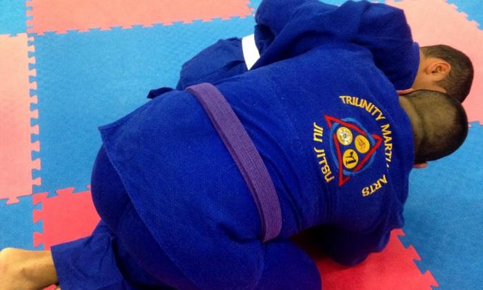Triunity Martial Arts Studios Inc.  - TriUnity Martial Arts: 5, 10, or 20 Drop-In Brazilian Jiu Jitsu Classesat Let's Get Physical! (Up to 79% Off)