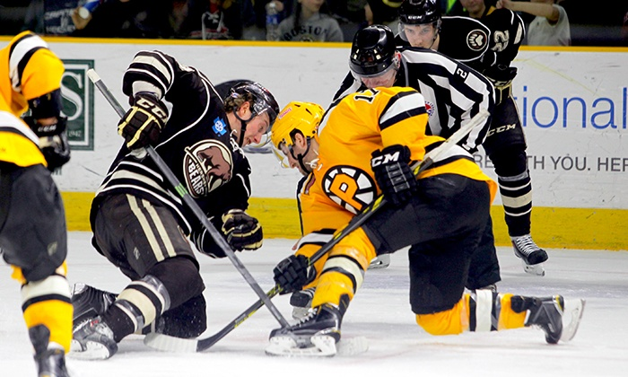 Providence Bruins - Dunkin' Donuts Center: Any 2015–16 Regular-Season Providence Bruins Hockey Game