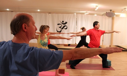 10 Yoga Classes or One Month of Unlimited Yoga at LaVida Dance and Yoga Studio (Up to 70% Off)