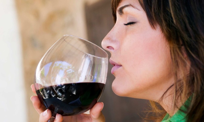 Whiskey Run Creek - Brownville: $23 for a Wine Tasting for Two and $40 Worth of Wine at Whiskey Run Creek ($46 Value)