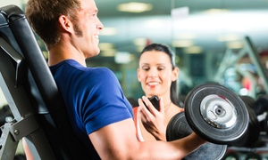 The Fitness Room: $21 for $60 Worth of Personal Fitness Program — The Fitness Room