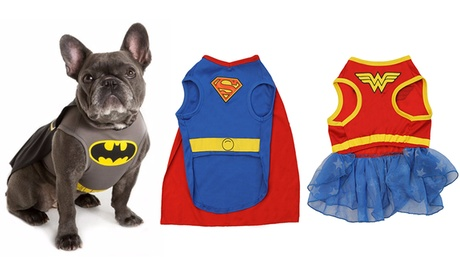 DC Comics Dog Costumes Superman Wonder woman Batman...Superhero costume for dogs Lightweight design Batman and Superman options include capes ...  sc 1 st  Ou0027Mal Alaskan Malamutes : batman costumes for dogs  - Germanpascual.Com