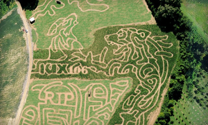 Jones Orchard - Millington: Corn Maze with Option of Haunted Hayride or $10 for Snacks for Two or Four at Jones Orchard (Half Off)