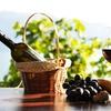 Half Off at Stony Mountain Vineyards