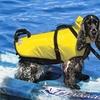 PetSafe Fido Float Dog Vest