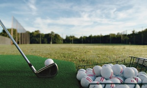 The Range: 5 or 10 Large Buckets of Driving-Range Balls or 60-Minute Golf Lesson Package at The Range (Up to 49% Off)