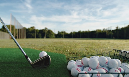 5 or 10 Large Buckets of Driving-Range Balls or 60-Minute Golf Lesson Package at The Range (Up to 57% Off)