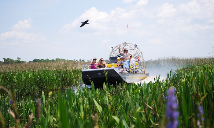 Cypress Lake Airboat Tours - Melbourne: $22 for a 60-Minute Airboat Eco Tour at Cypress Lake Airboat Tours ($45 Value)